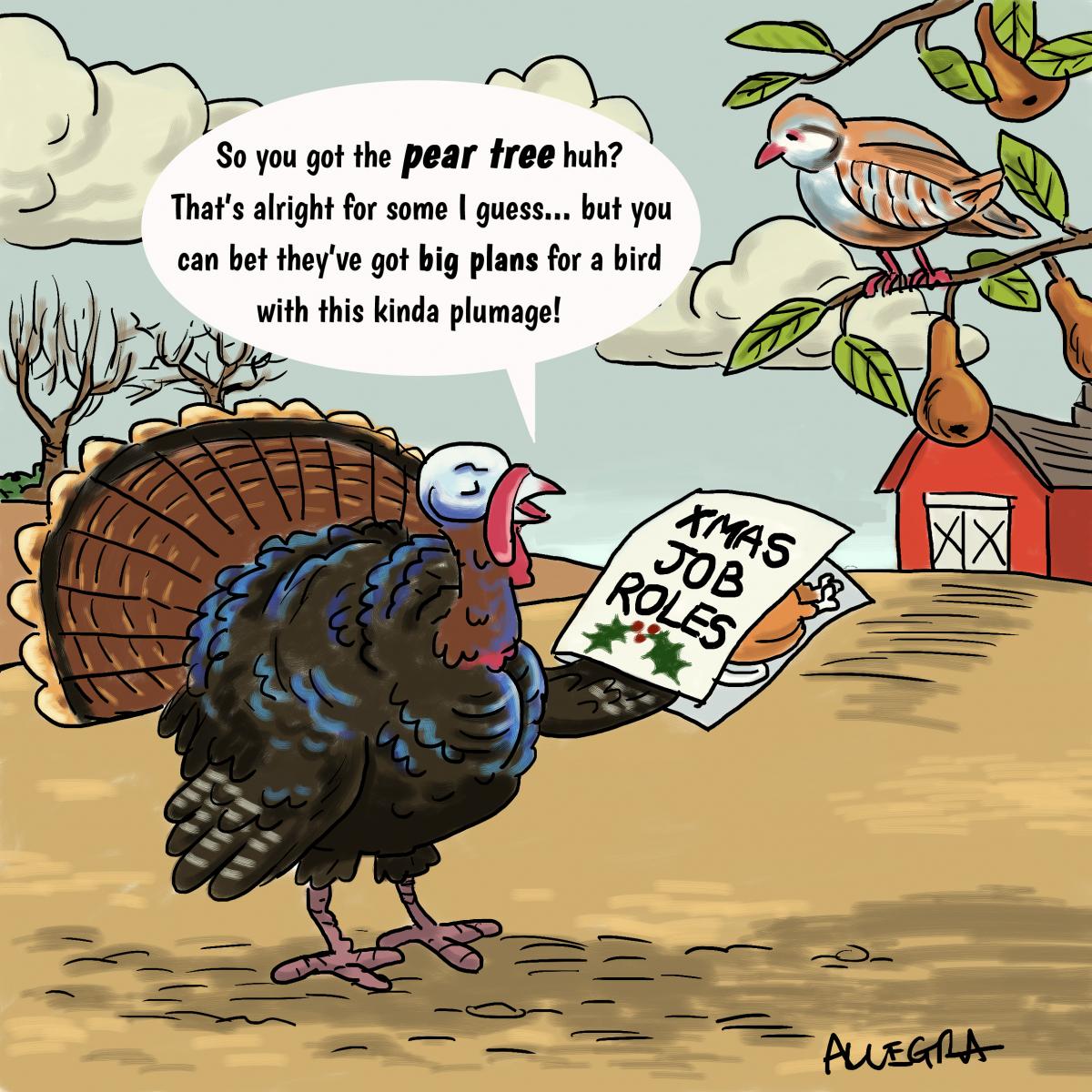 Turkey-job-done
